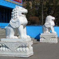 Львы, Караганда