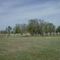 Cemetery of Atasu, Токаревка