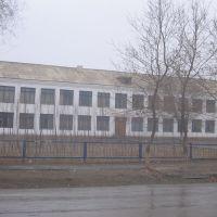школа №46 ., Чиили