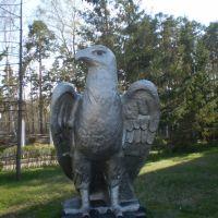 Этот орёл всю жизнь простоял недалеко от Колоколовки, но затем загадочным образом перелетел в сторону Борового, и на всякий случай самоперекрасился ;-) (Stone eagle), Боровое