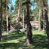 Парк, Боровое