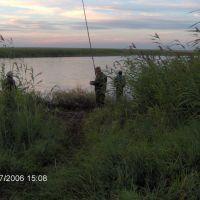 Полторацкий  пруд, Володарское