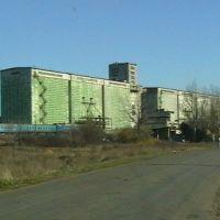 Камыш-Зарянский элеватор, Куйбышевский