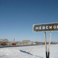 Невское, Ленинградское