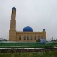 Мечеть, Степняк