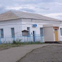 Аптека, Степняк