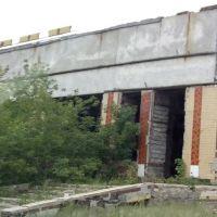 Старые развалины, Степняк