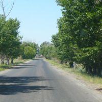 По дороге в Чкалово, Чкалово