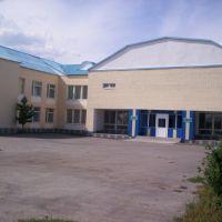 Муз Школа, Боровской
