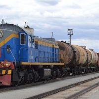 ТЭМ2 с грузовым поездом на ст.Джетыгара Казахстан, Джетыгара