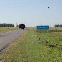 Леденево (указатель), Камышное