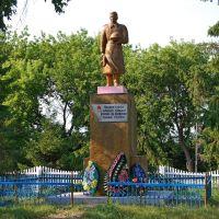 Памятник, Камышное