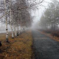 Утренний туман, Ленинское