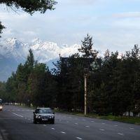 Проспект Суюнбая (бывший Красногвардейский тракт), Орджоникидзе