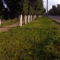 Суинбая - Громова, Орджоникидзе