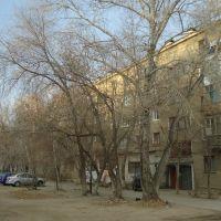павлодар, ул. московская, д.16, Ермак