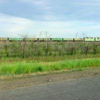 поезд, Краснокутск