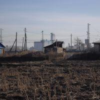 Вид на булаевский элеватор, Булаево