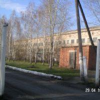 Hospital, Мамлютка