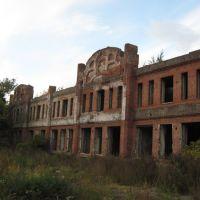 Графские развалины, Петропавловск
