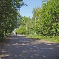 улица Русской Березки, Сергеевка
