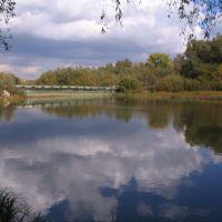 Мост, Соколовка