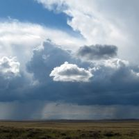 Дожди над степью, Баршатас