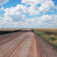 Road to Karaganda, Баршатас