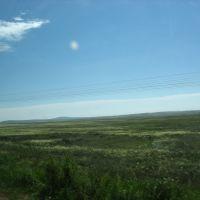 Steppe, Бельагаш