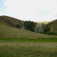 Saryarka landscape, Бельагаш