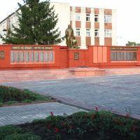 Аллея Героев, Большая Владимировка