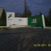 Памятник, Большая Владимировка