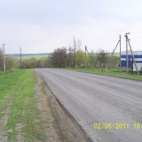 въезд в Панино, Большая Владимировка