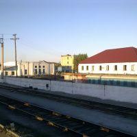 Костанай, Кайнар