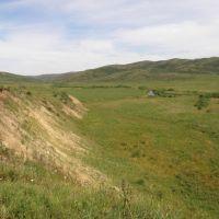 Долина Талдыбулак, Кокпекты
