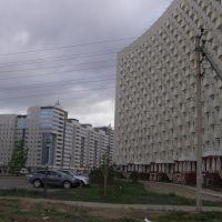 Скворечник / Nesting box, Таскескен