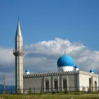 Мечеть в Большенарымском (июль 2010г.), Андреевка