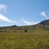East Kazakhstan Province / Восточно-Казахстанская область, Андреевка