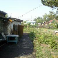двор, Кировский