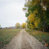 Дорога вдоль Иртыша, Кировский
