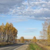 Дорога в осень., Кугалы