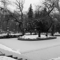 Islet, Панфилов