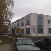 Здание в поселке Сарканд., Сарканд