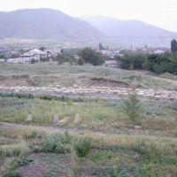 вид с окна, отара овец, Коринское ущелье, Текели