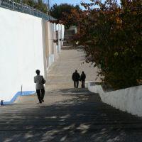 лестница, Текели