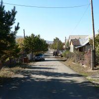 улица, Текели