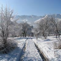В нашем парке зима..., Текели