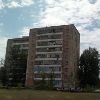 1107201312273, Аркалык