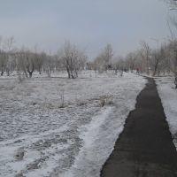 Центральный парк, Аксу