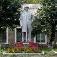 * * *, Астраханка